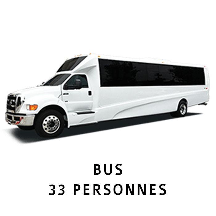 Shuttle (Airport) BUS 33 PERSONNES SITE