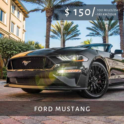 Locations de Voitures de Luxe FORD MUSTANG