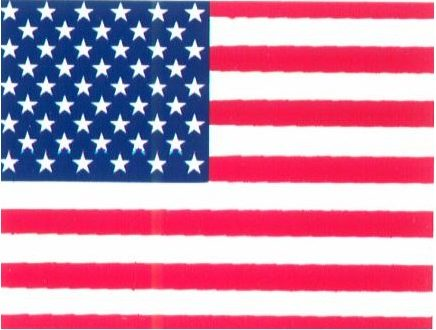 US ENglish  Shopping drapeau usa e1583435539258
